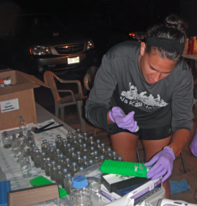 Frank conducting an experiment at He'eia Fishpond to measure respiration rates of the pond's aquatic microbes